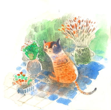 Poco the cat in the garden